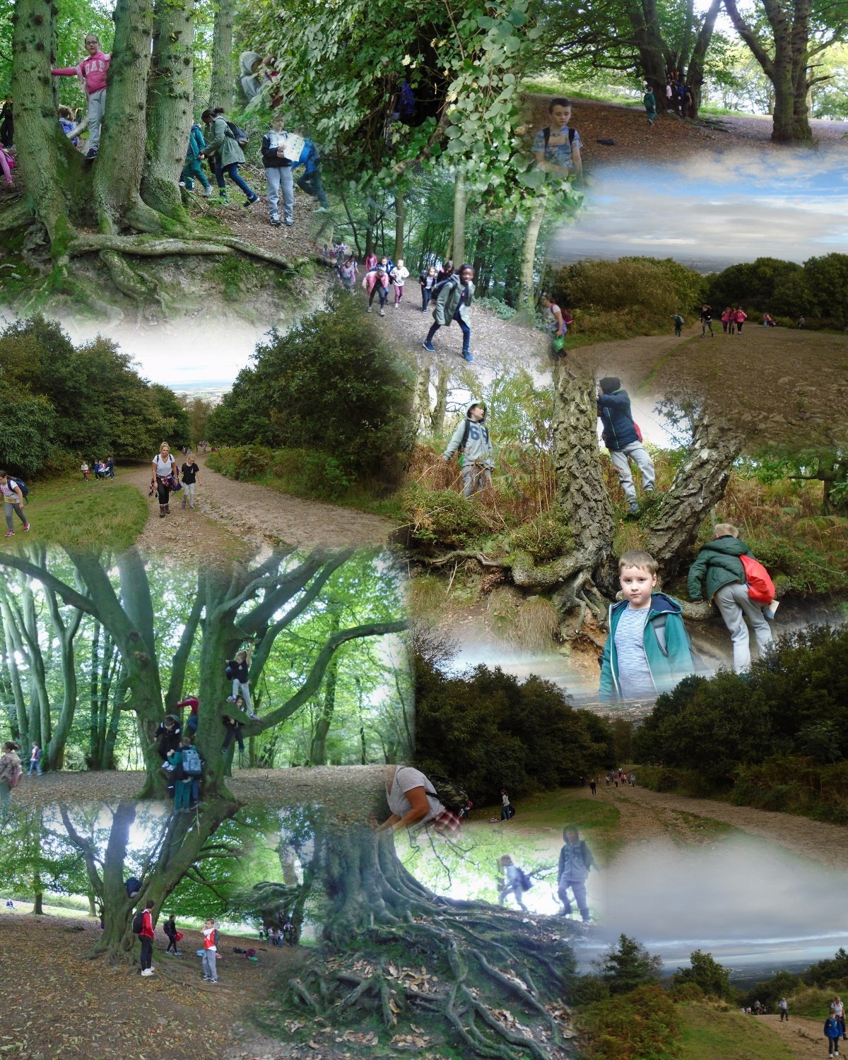 The wrekin trip_AutoCollage_12_Images_2.jpg